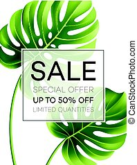 Sale banner or poster with palm leaves and jungle leaf.