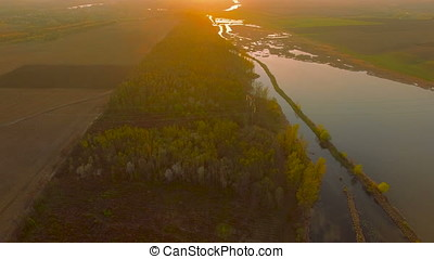 Aerial felled forest at river canal. Environmental...