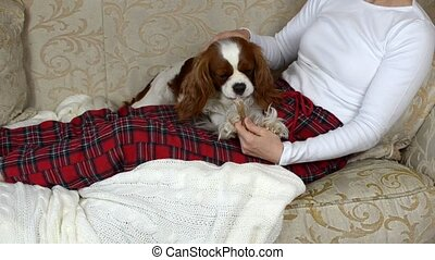 Dog Chewing Its Bone - Woman is sitting on a sofa and...