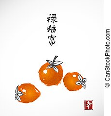 Three date-plum fruits on white background. Traditional...