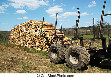 Sustainable Resources Timber Wood