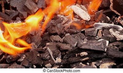 burning charcoal in the background - Close up of camp fire...