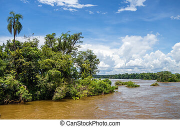 Parana river at iguazu falls national park. tropical rapids...