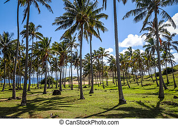 Anakena palm beach and Moais statues site ahu Nao Nao,...