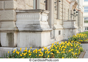 beautiful facade of university with flowerbed