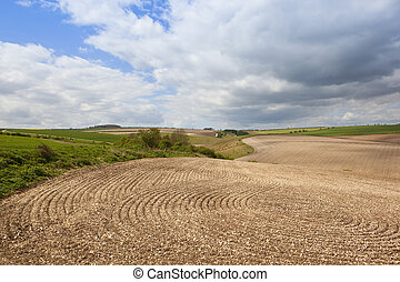 chalky cultivated soil patterns - lines and patterns in...