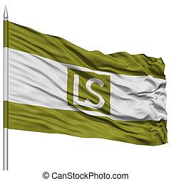 Lees Summit City Flag on Flagpole, USA - Lees Summit City...