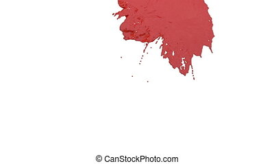 stream of red paint falling on white background - screen and...