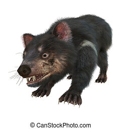 3D Rendering Tasmanian Devil on White - 3D rendering of a...