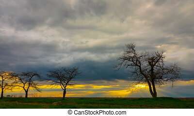Dramatic Sunset Sky. - Dramatic Sunset Sky with Trees in the...