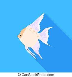 Angelfish common fish icon flat. Singe aquarium fish icon...