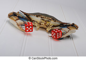 Crab playing dice. - Maryland blue crab playing craps.
