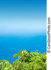 Tropical flora, hot summer, ocean