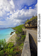 A view of the beautiful coastline on Bonaire