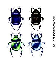 Set of scarab beetles - Vector set of different dark blue,...