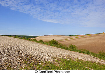 chalky cultivated hills - undulating chalky cultivated...