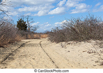 Sandy Hook Trail in National Park - A path leads to the...