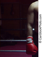 kick boxer with a focus on his glove