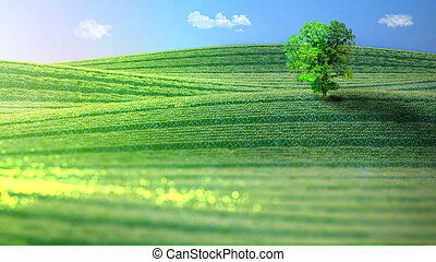 Landscape of verdant hills with a tree. 3D rendering. -...