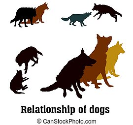Vector group of dogs