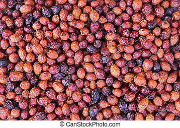 Dogrose fruits background - Closeup dried red hawthorn...