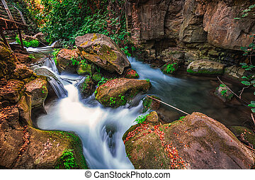 Banias river flow - Banias river at north of Israel, flowing...