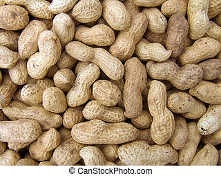 peanut background - Agricultural background, a pile of...
