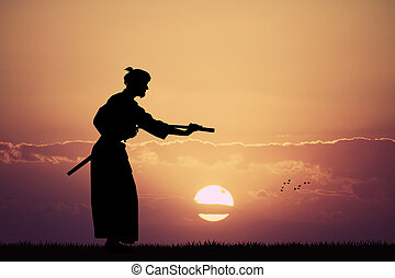Aikido demonstration at sunset - illustration of Aikido...