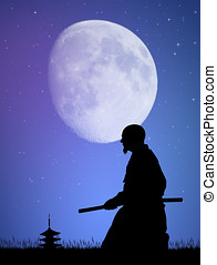 Aikido in the moonlight - illustration of Aikido in the...