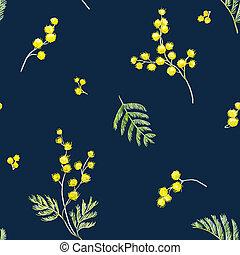 acquarello,  mimosa, modello