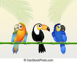 tropical birds in the forest - illustration of tropical...