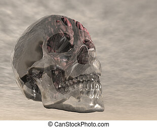brain - digital visualization of a crystal skull with brain