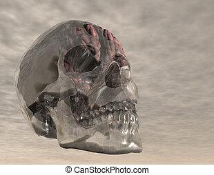 brain - digital visualization of a crystal skull with brain