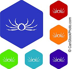 Japanese spider crab icons set hexagon