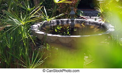 Fountain in the Garden - Stone Fountain in a Garden With...