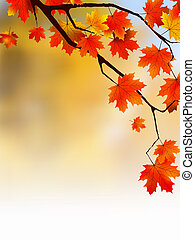 Autumn yellow leaves, shallow focus. EPS 8 vector file...