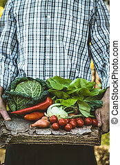 Farmer with organic food - Organic vegetables. Farmers hands...
