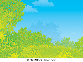 Summer green forest - Illustration of a glade with trees and...