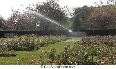 Irrigation in the garden.