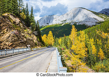 Cloudy autumn day in the Rockies