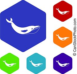 Whale icons set hexagon isolated vector illustration