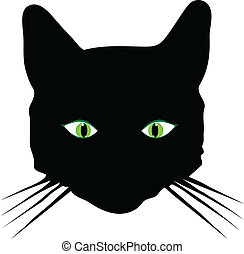 cat with green eye