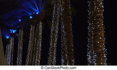Palm trees with a lot of lights in the night