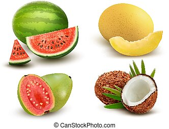 Collection of fruit and berries. Watermelon, honeydew,...