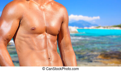fit man posing in a beach - sexy caucasian fit man posing in...