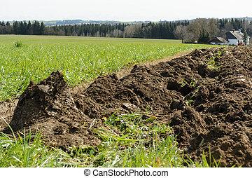 fresh soil - clod - plowed meadow became fresh farmland -...