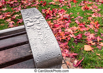 UK autumn - Macro waterdroplets on the bench with red yellow...