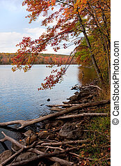 New England Fall Foliage - A gorgeous autumn scene with a...