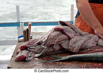 azul, pez, pescador, limpieza