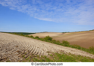 chalky cultivated fields - lines and patterns in newly...
